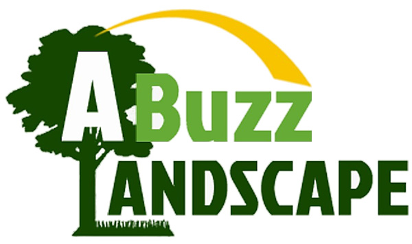 Abuzz Landscape Private Limited